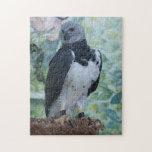 Harpy Eagle Jigsaw Puzzle