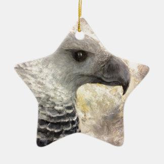 Harpy Eagle Study in Acrylic Ceramic Ornament