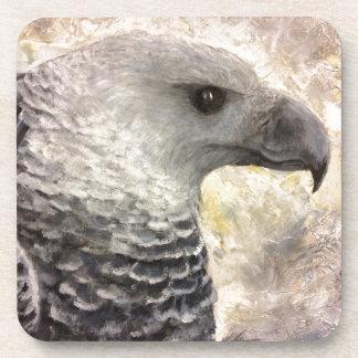 Harpy Eagle Study in Acrylic Coaster
