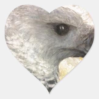 Harpy Eagle Study in Acrylic Heart Sticker
