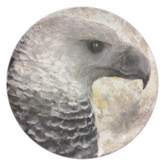 Harpy Eagle Study in Acrylic Melamine Plate