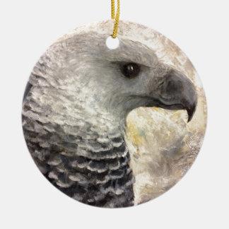 Harpy Eagle Study in Acrylic Ornament
