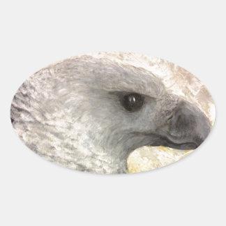 Harpy Eagle Study in Acrylic Oval Sticker