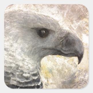 Harpy Eagle Study in Acrylic Square Sticker