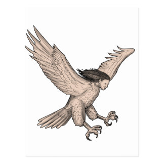 Harpy Swooping Tattoo Postcard