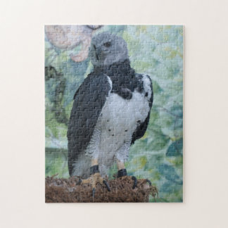 Harpy todavía Eagle Puzzles