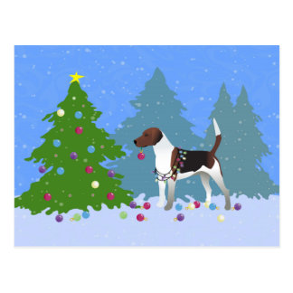 Harrier or Beagle Decorating a Christmas tree Postcard