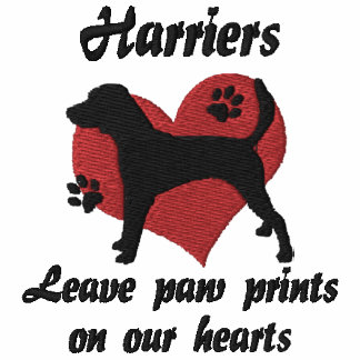 Harriers Leave Paw Prints