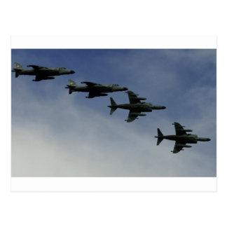Harriers Postcard