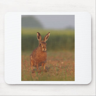 Harriet Hare Mouse Pad