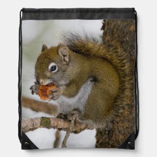 Harriman State Park, Idaho. USA. Red Squirrel Drawstring Backpack
