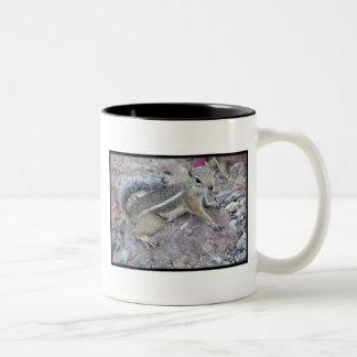 Harris Antelope Squirrel Coffee Mug