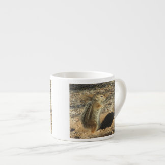 Harris' Antelope Squirrel Espresso Cup