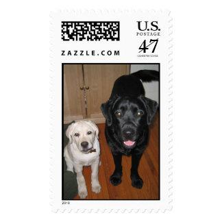 Harris_Duke, Harris_Duke2, Duke & Harris Pressley Postage