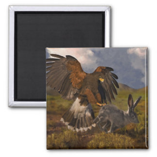 Harris Hawk and Jackrabbit - acrylic 2 Inch Square Magnet