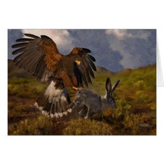 Harris Hawk and Jackrabbit - acrylic Card