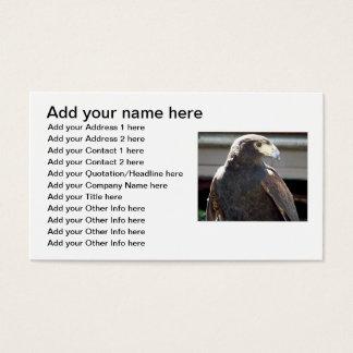 Harris' Hawk Business Card