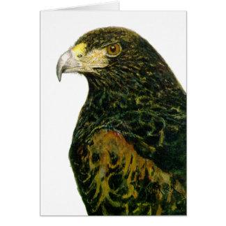 Harris Hawk card