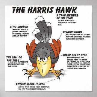 Harris Hawk Cartoon Poster