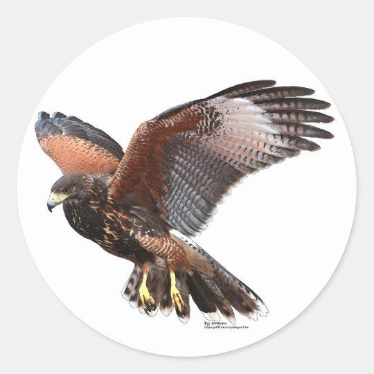 Harris Hawk Classic Round Sticker