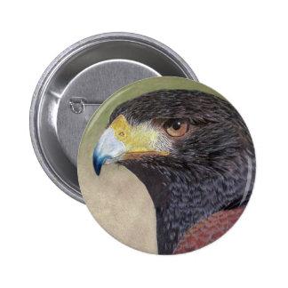 Harris Hawk-cp Button
