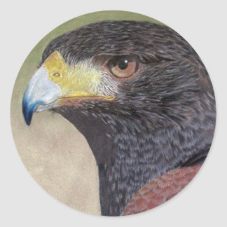 Harris Hawk-cp Classic Round Sticker
