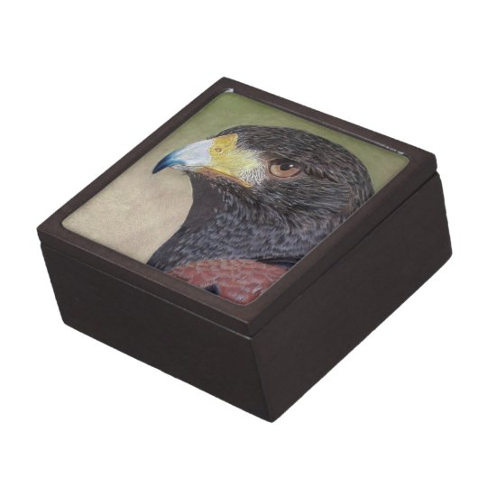 Harris Hawk-cp Jewelry Box