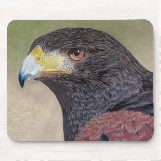 Harris Hawk-cp Mouse Pad