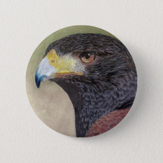 Harris Hawk-cp Pinback Button