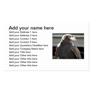 Harris' Hawk Double-Sided Standard Business Cards (Pack Of 100)