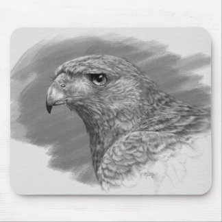Harris Hawk Drawing Mouse Pad