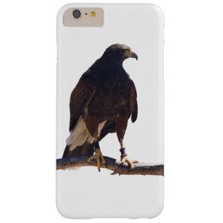 Harris' Hawk iPhone 6 Plus case