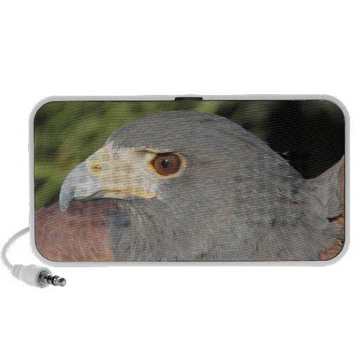 Harris Hawk iPhone Altavoces