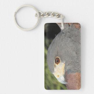Harris Hawk Keychain