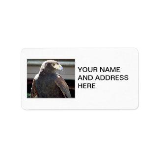 Harris' Hawk Label