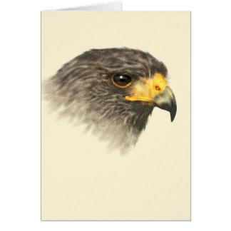 Harris Hawk - Mixed Medium Card