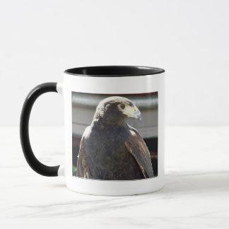 Harris' Hawk Mug