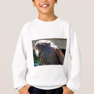 Harris' Hawk Sweatshirt
