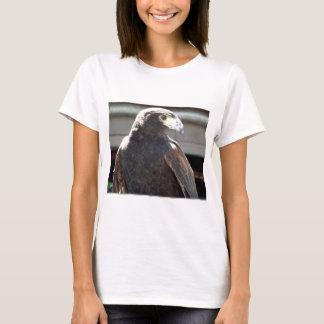 Harris' Hawk T-Shirt