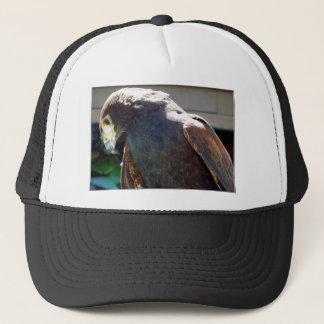 Harris' Hawk Trucker Hat