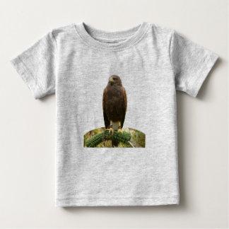 Harris Hawk Tee Shirt
