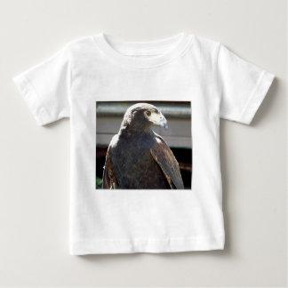 Harris' Hawk T Shirt