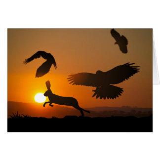 Harris Hawks Card