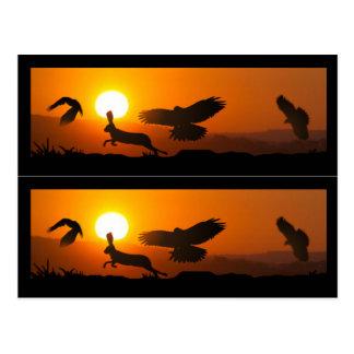 Harris Hawks Hunting Book markers Postcard