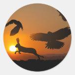Harris Hawks Hunting Classic Round Sticker