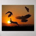 Harris Hawks Hunting Poster