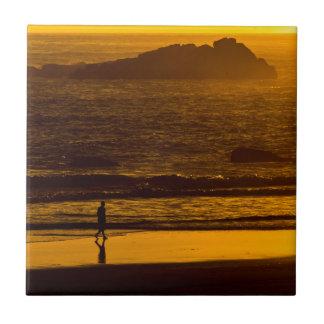 Harris que da un paseo vara en la puesta del sol - azulejo cuadrado pequeño