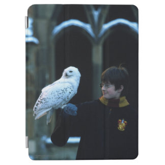 Harry and Hedwig 2 iPad Air Cover