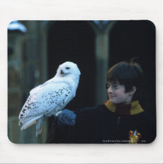 Harry and Hedwig 2 Mouse Pad