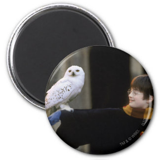 Harry and Hedwig 3 2 Inch Round Magnet